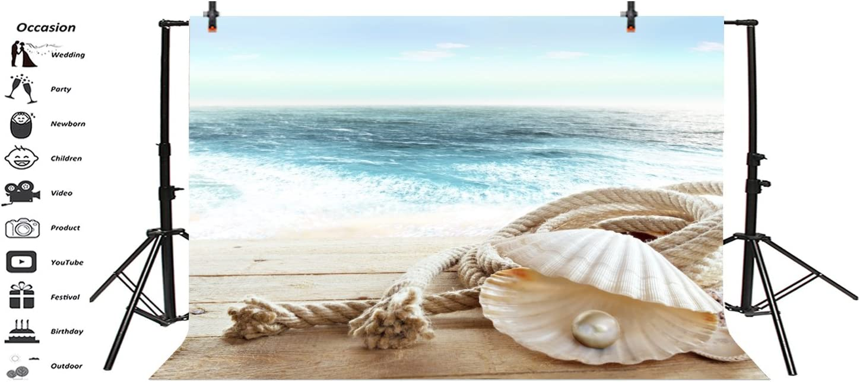 Nautical 10x12 FT Photo Backdrops,Marine Elements Nostalgic Pties Wind Fall Under Trip Around The World Concept Background for Child Baby Shower Photo Vinyl Studio Prop Photobooth Photoshoot Beige Re