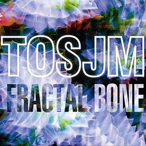 Fractal Bone