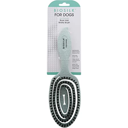 BioSilk for Dogs Eco-Friendly Grooming Brush for Dogs in Mint Green   Easy to Hold Ergonomic Handle Dog Brushes  Best Pet Brush for Dog Grooming and Detangling