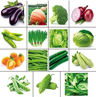Golden autumn farm - Non GMO Combination of 15 Popular and Easy to Grow Green Vegetable Seed Combination