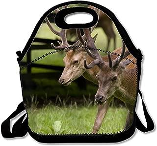 Deer Reusable Insulated Lunch Tote Bag Portable Lunchbox Handbag