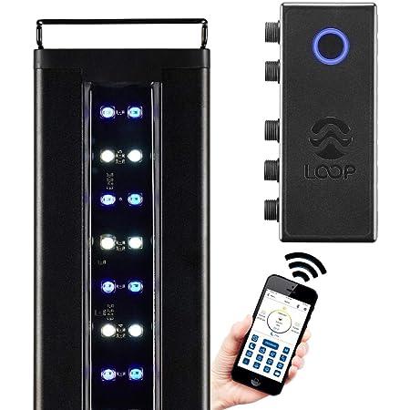 CURRENT USA Orbit Marine IC LED Saltwater Reef Aquarium Light | with Wireless Lighting & Wave Pump Control | Loop App - Bluetooth