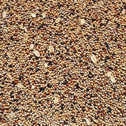 Supravit Wachtelfutter 5 kg Hauptfutter & Basisfuttermischung für Wachteln