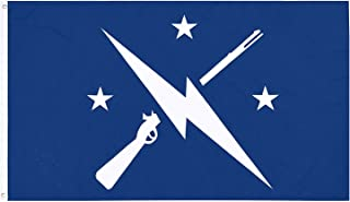 Fallout Flag, Commonwealth Minutemen Flag, Exclusive Fallout Merchandise for Indoor/ Outdoor Use, 100% Polyester, 3 x 5 Ft