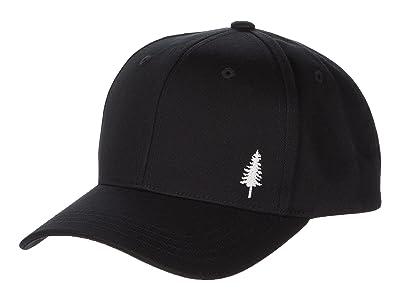 tentree Golden Spruce Elevation Hat