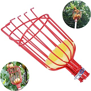 Fruit Picker, Apple Picking Tools,Easy to Attach Twist-On Basket, Aluminum 10 ft Extension Pole, Suit for Avocados Picking, and Other Fruit (red)
