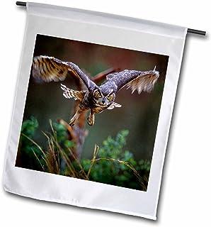 3dRose fl_89310_1 Georgia, Pine Mtn, Callaway Gardens. Barred Owl-Us11 Bja0011-Jaynes Gallery Garden Flag, 12 by 18-Inch