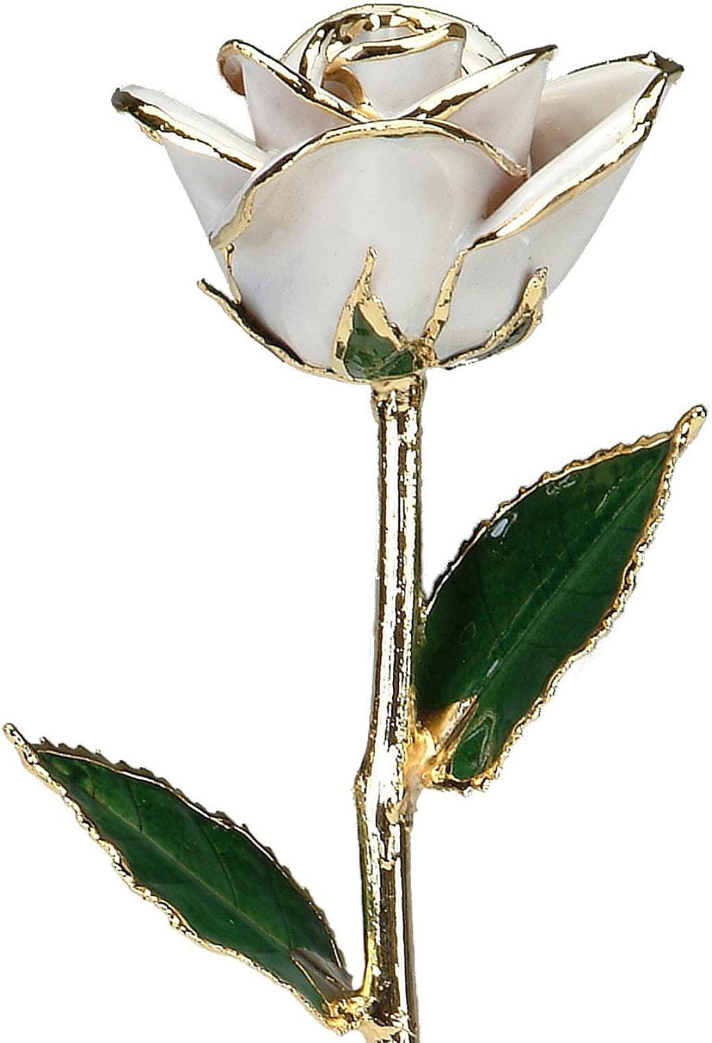 Snow White Laquered 24k gold Dipped Long Stem Genuine pink In Gift Box