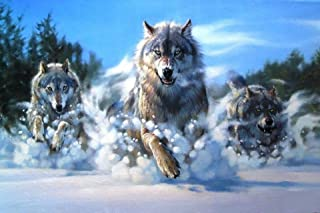 Diamond Painting Kits for Adults Kids, 5D DIY Wolf Diamond Art Accessories with Full Drill for Home Wall Decor - 15.7inx11.8in