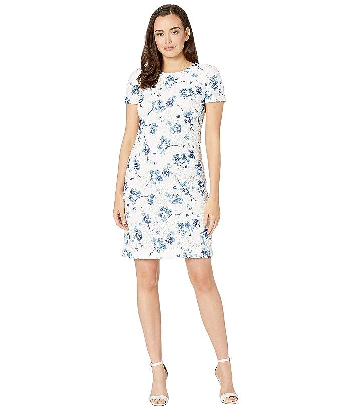 780fb107bb5 LAUREN Ralph Lauren B773 La Vara Floral Adika Short Sleeve Day Dress (Lauren  White/