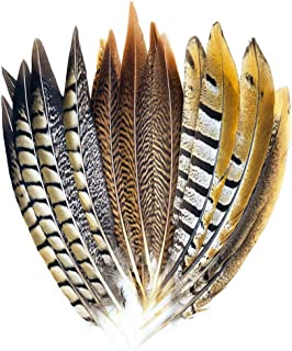 wanjin Natural Turkey Feathers 9-12 inches Party DIY Decoration per Pack of 10