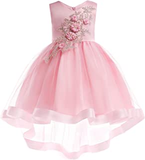 NOMSOCR Kids Lace Embroidery Costume Dress Girl Princess Pageant Party Tutu Dresses