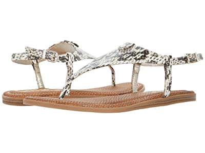Circus by Sam Edelman Carolina (Ivory Multi) Women