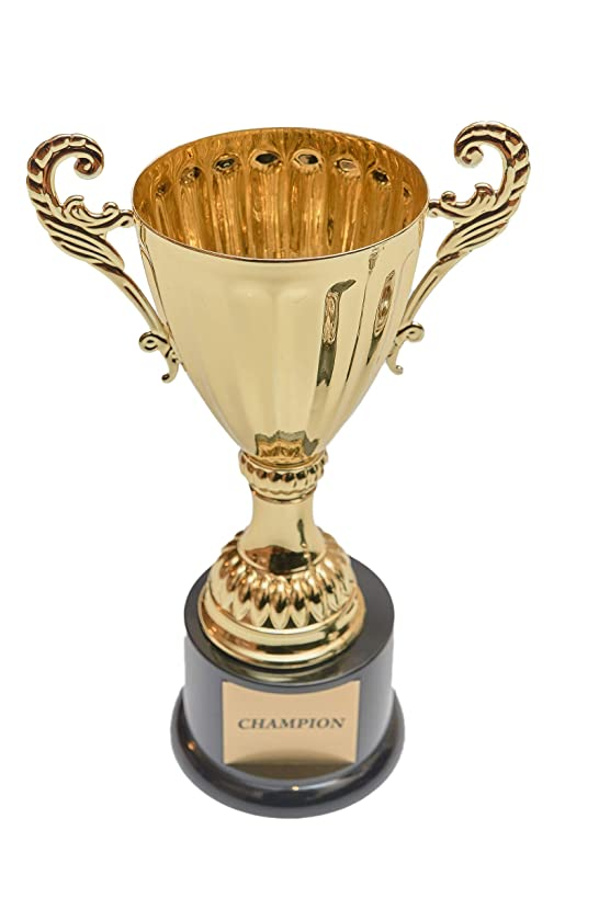 Fantasy Bros Completed Metal Cup Trophy   Best Champion Trophy Cup with Plastic Base for Sports, Awards, Prizes, Souvenirs & Gifts   Various Sizes for First, Second, and Third (Gold, 14 1/2 Inch)
