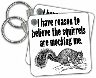 3dRose I Have Reason to Believe The Squirrels are Mocking Me Key Chains, Set of 2 (kc_171998_1)