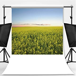 XXL canola Field Twilight Photography Background,156102 for Video Photography,Pictorial Cloth:6x10ft