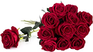 """Royal Imports Artificial Silk Roses Velvet 30"""" Long Stemmed, 1 Dozen Flowers for Bouquets, Mother's Day, Weddings or Gift - Red"""