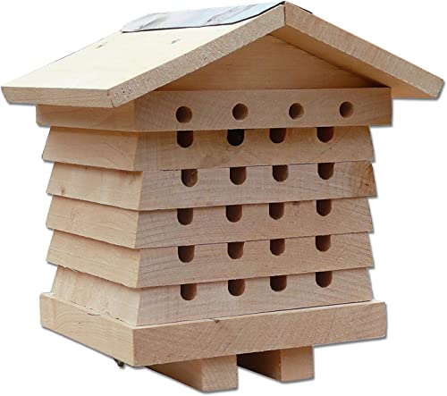 high quality SkyMall online sale Mason and 2021 Leafcutter Cedar Solitary Bee House online sale