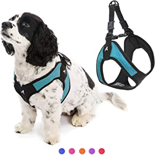 Gooby - Escape Free Easy Fit Harness, Small Dog Step-In Harness for Dogs that Like to Escape Their Harness, Turquoise, X-S...