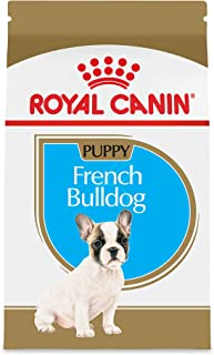 Royal Canin Breed Health Nutrition French Bulldog Puppy Dry Dog Food