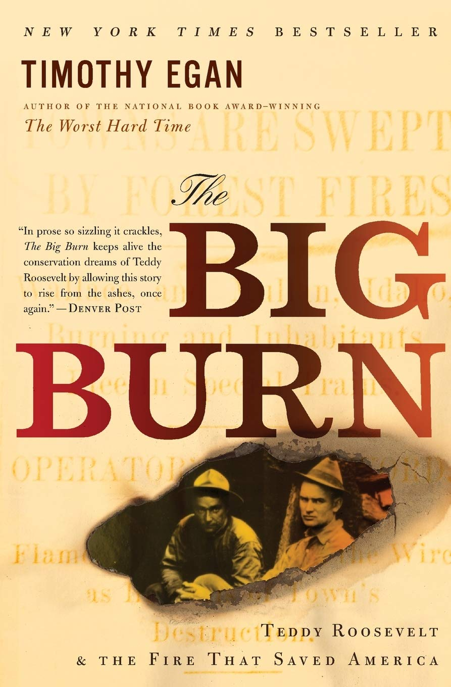 Image OfThe Big Burn: Teddy Roosevelt And The Fire That Saved America