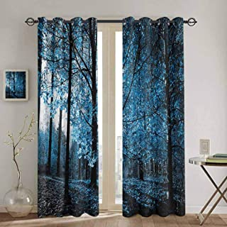 DONEECKL Woodland Window Curtain One September Afternoon in Woodland Autumn Nature Artistic Stylized Picture Print Waterproof Fabric W42 x L45 inch Blue Black