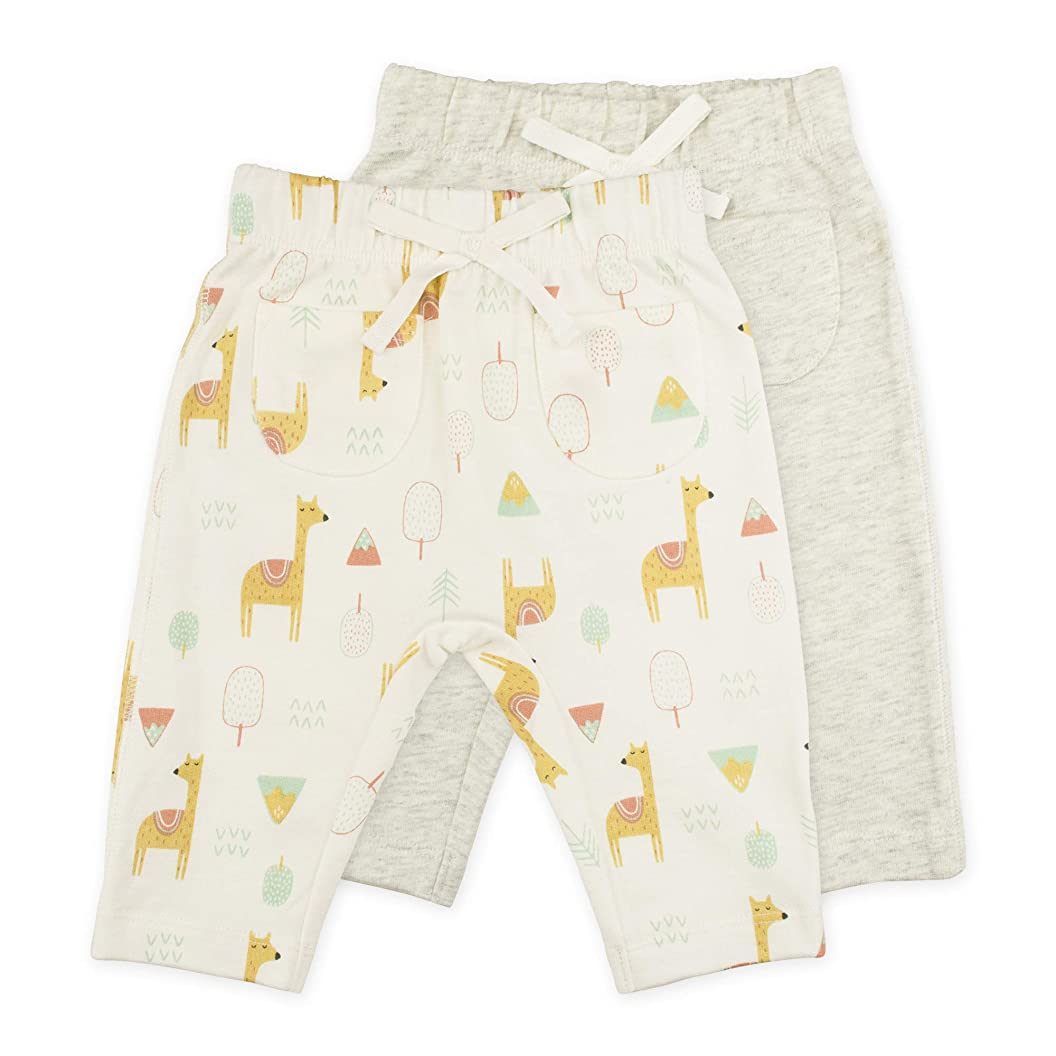 Sunny & Sal Baby Boy or Baby Girl Pant Set, 2-Pack Knit Pants fhcbgsdbhde42