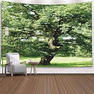 leafy treetops