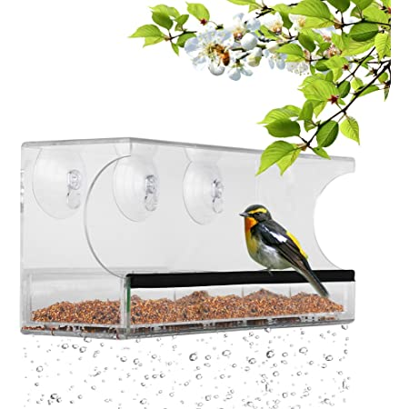 Amazon Com Window Bird Feeder With 3 Super Strong Suction Cups Removable Seed Tray Drain Holes Made Of Clear Strong 11 8 X 5 Inches Acrylic Glass Idea Garden Outdoor
