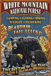 White Mountains, New Hampshire - Black Bear Vintage Sign (9x12 Art Print, Wall Decor Travel Poster)