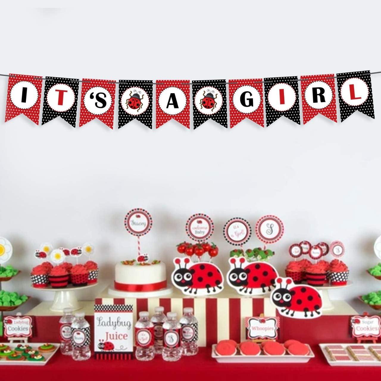 Ladybug First Birthday Party Ladybug Party Decorations Ladybug High Chair Banner Ladybug Banner 1st Birthday Banner Ladybug Photo Prop