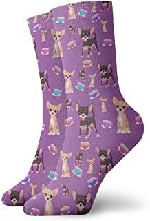 socks for teacup chihuahua