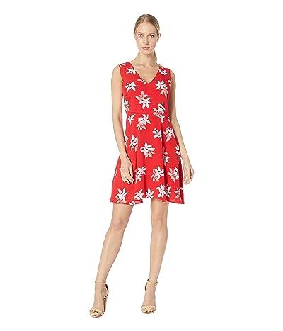 BB Dakota Daffodil Thrill Dress (Berry Red) Women