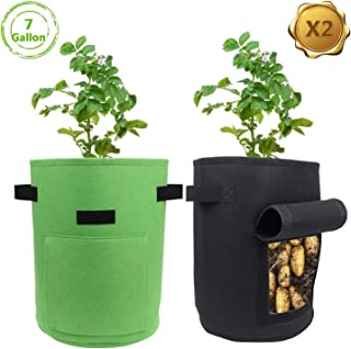 ARSSILEE 2 Pack Potato Grow Bag, 7 Gallon Aeration Waterproof Fabric Sweet Potato Planter, Velcro Window Vegetable Peanut Growing Box Bucket Pot for Nursery Garden (2 Pack, Black Green)