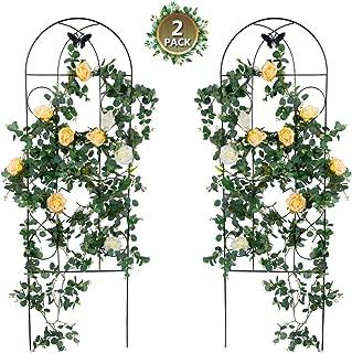 Tingyuan Garden Trellis for Climbing Plants Rustproof Black Iron Trellis for Ivy Roses Cucumbers Clematis Pots Support, 2 Pack