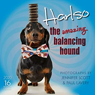 Harlso 2020 Wall Calendar - The Amazing Balancing Hound: by Sellers Publishing