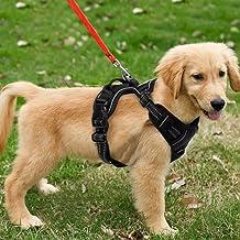 Harnais pour chien gris Contr/ôle facile en ext/érieur pour les petits chiens de taille moyenne Coffre daide /à lentra/înement /à la marche Harnais pour chien respirant sans traction r/églable