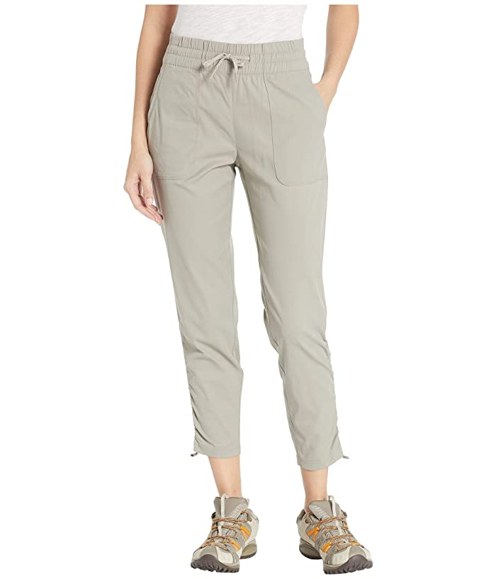 The North Face Aphrodite Motion 2.0 Pants (Silt Grey) Women