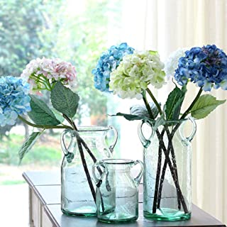 Noah Decoration Double Ear Hand-Blown and Handmade Transparent Flower and Filler Bubble Glass for Home and Wedding Indoor and Outdoor Decoration 7 inch Tall Size Small