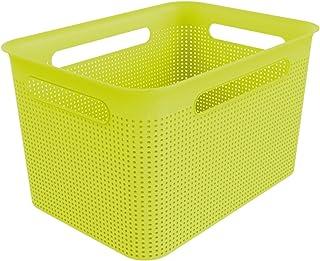 Rotho Brisen Grande Boîte de Rangement 16L avec 4 Poignées, Plastique (PP) sans BPA, Vert, 16L (36,0 x 26,2 x 21,1 cm)