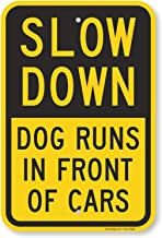 Best watch out for dogs Reviews