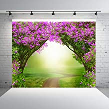 Dudaacvt 7x5ft Fantasy Background Fairytale Magical Forest Dreamlike Magic Forest with Road Beautiful Spring Landscape Pink Flowers Background Q019