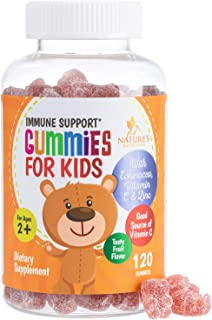 Kids Immune Support Gummies with Vitamin C, Echinacea and Zinc - Children's Support & Vitamin C Gummy, Tasty Natural Fruit...