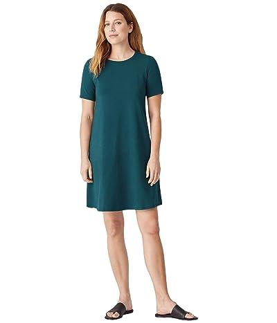 Eileen Fisher Crew Neck Short Sleeve Knee Length Dress in Organic Cotton Stretch Jersey