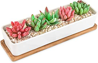 HOMENOTE Larger Rectangle Planter Pots (Size:11.1 x 3.54 x 2.17 inch) for Small Succulent Plants Long White Ceramic Succulent Planter Pots with Drainage Hole and Bamboo Tray