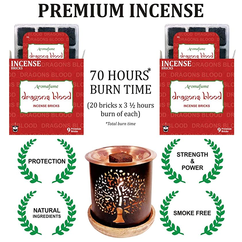 石の冒険家吐き出すアロマフュームインセンスブリック + エキゾチックな香炉 | 18個パック (9x2) | ホーム/ルームフレグランス | ギフト レッド