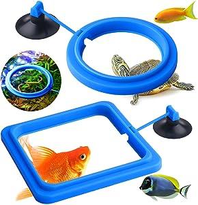 Molain Fish Feeding Ring, 2 Pieces Fish Feeder Aquarium Fish Turtle Tank Accessories Food Feeder Circle for Guppy, Bettas, Goldfish, Turtle