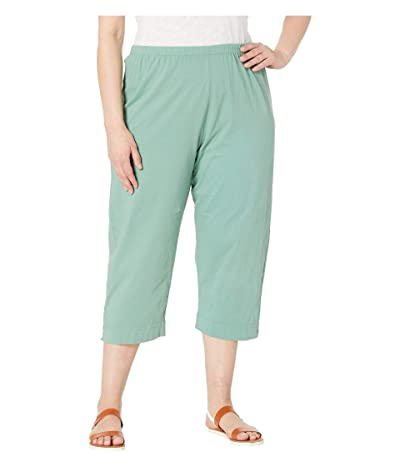 Fresh Produce Plus Size Jersey Capri Pants (Lagoon Green) Women