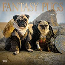 Fantasy Pugs 2021 12 x 12 Inch Monthly Square Wall Calendar with Foil Stamped Cover by Wyman, Funny Animals