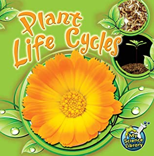 Best plant my seed Reviews